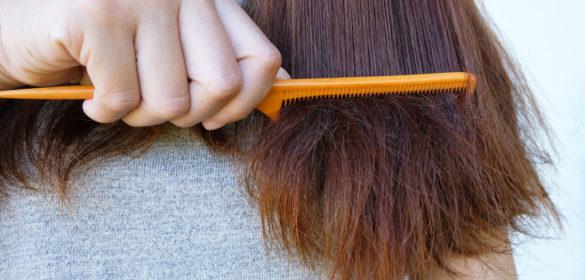 biotine pour entretien cheveux
