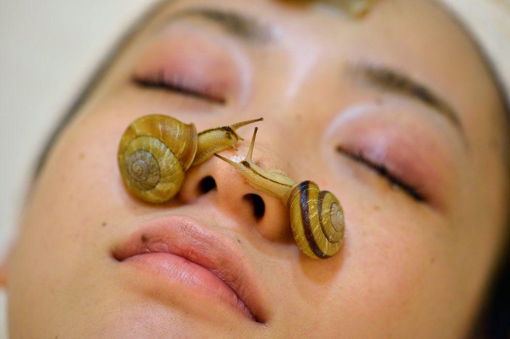 bienfaits de la bave d'escargot