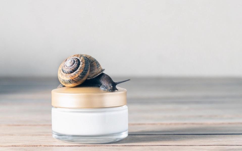 Quels sont les bienfaits de la bave d'escargot pour notre peau ?