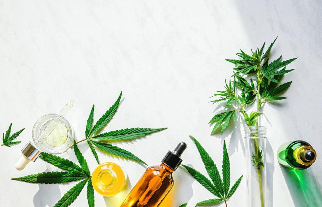 Top 5 des produits au chanvre pour la peau et le bien-être